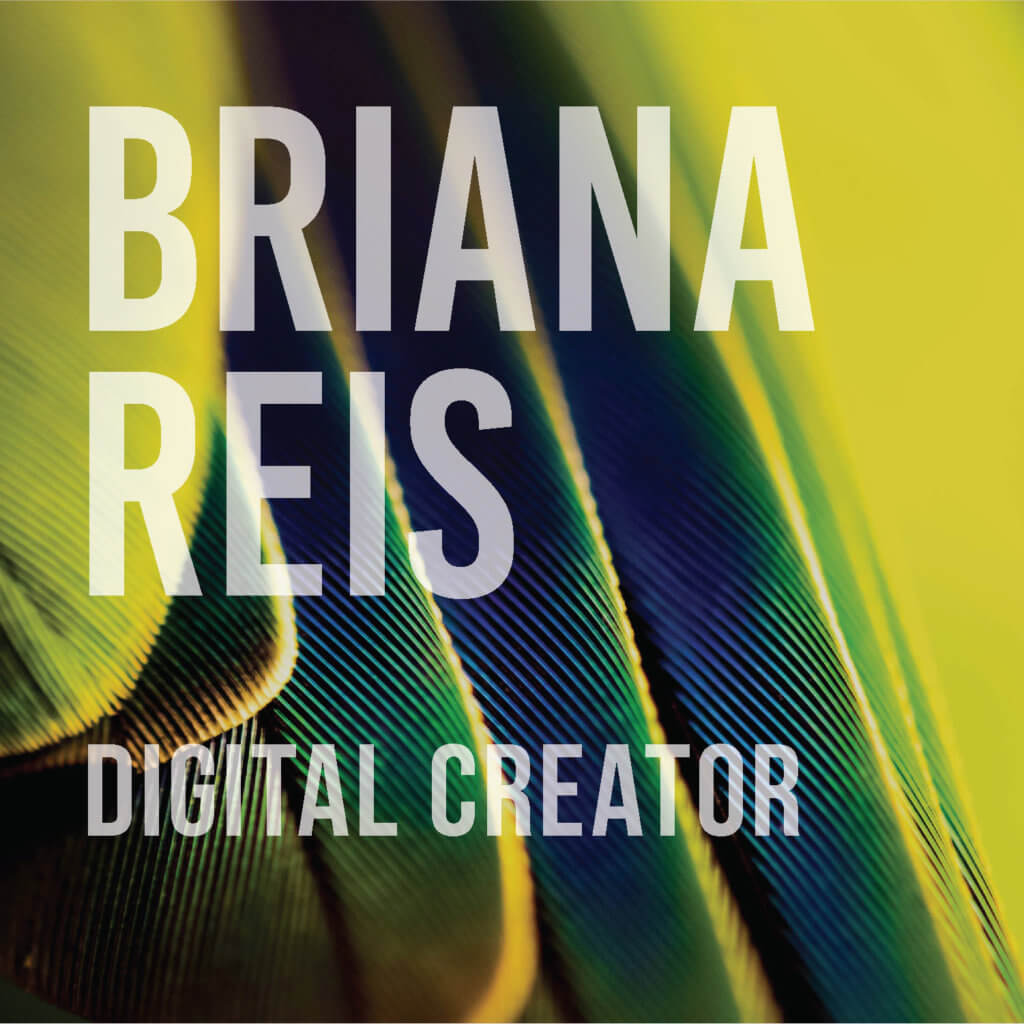 Click or tap to view works by Briana Reis