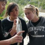 Students examining another fish