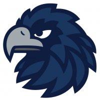 Shadow Hawk Logo for Suzanne Palmer Photo