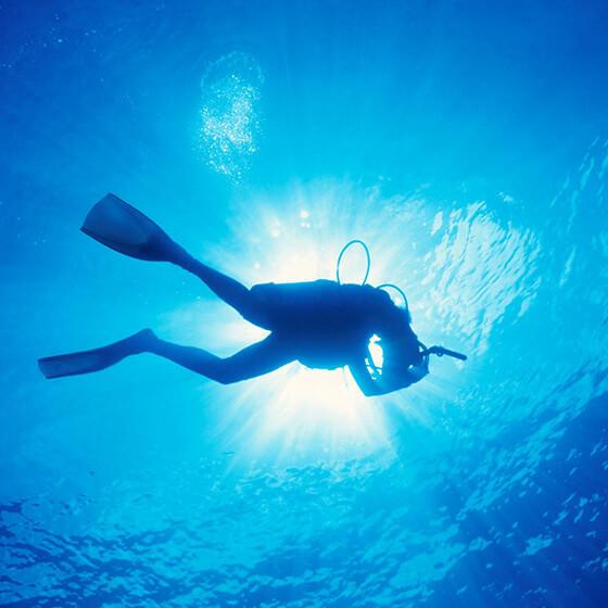 Future of the Ocean Symposium & Champions of the Ocean Awards
