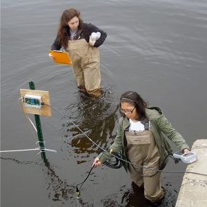eDNA: A Forensic Approach to Fish Detection