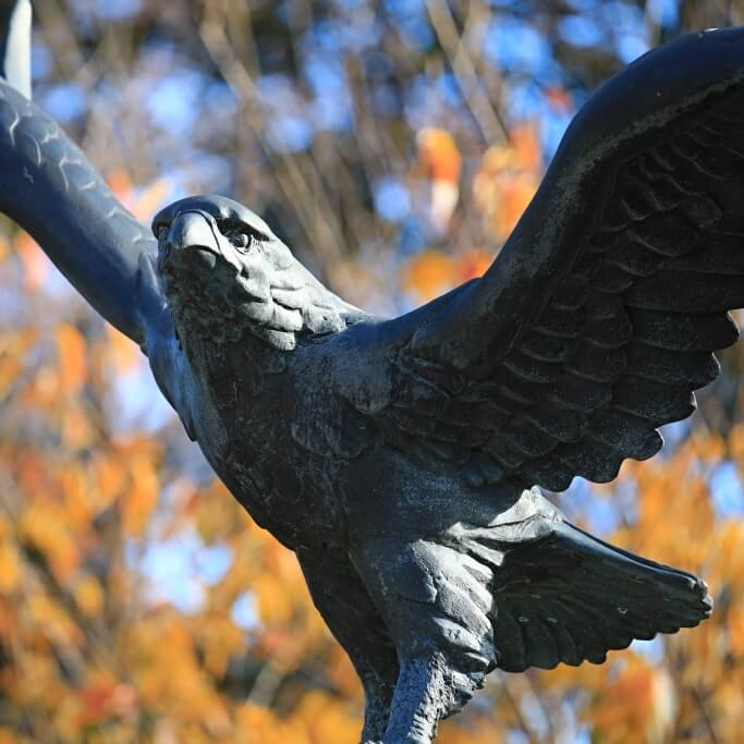 Hawk Statue in the Fall