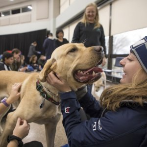 Monmouth student petting a therapy dog