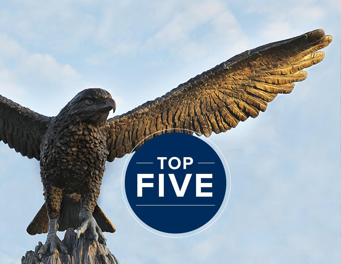 Hawk Sculpture