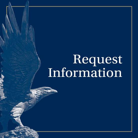 Request Information