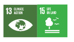 Sustainable Development Goals 13 and 15: Environment