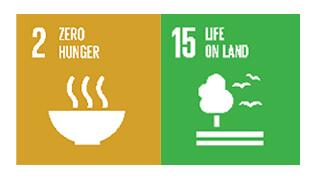 Environment Theme - SDGs 2 and 15