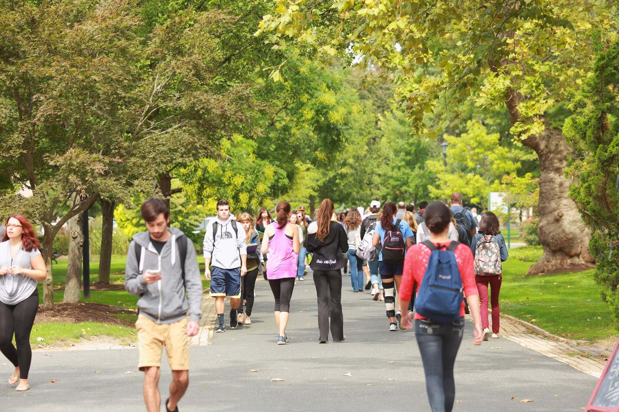 students walking the path on campus