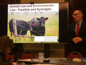 Abate Delivers Book Talks on Climate Change, Animal Law