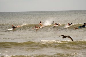 Monmouth University to Study Water Pollution at Surfing Beaches