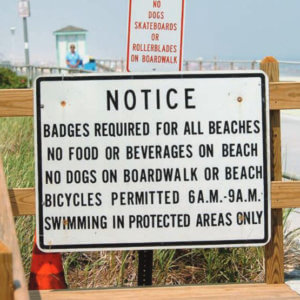 Student Papers Examine Discriminatory Barriers to Beach Access, Climate Threats to Right Whales