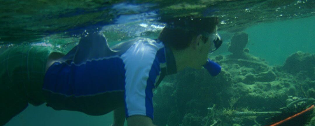 Study marine & environmental biology on campus, at the shore, and in the Bahamas.