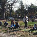 Community Garden - 2
