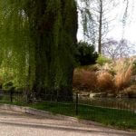 Photo of picturesque gardens in London England - Click to view larger image