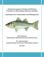 Best Practices Catch and Release Preview