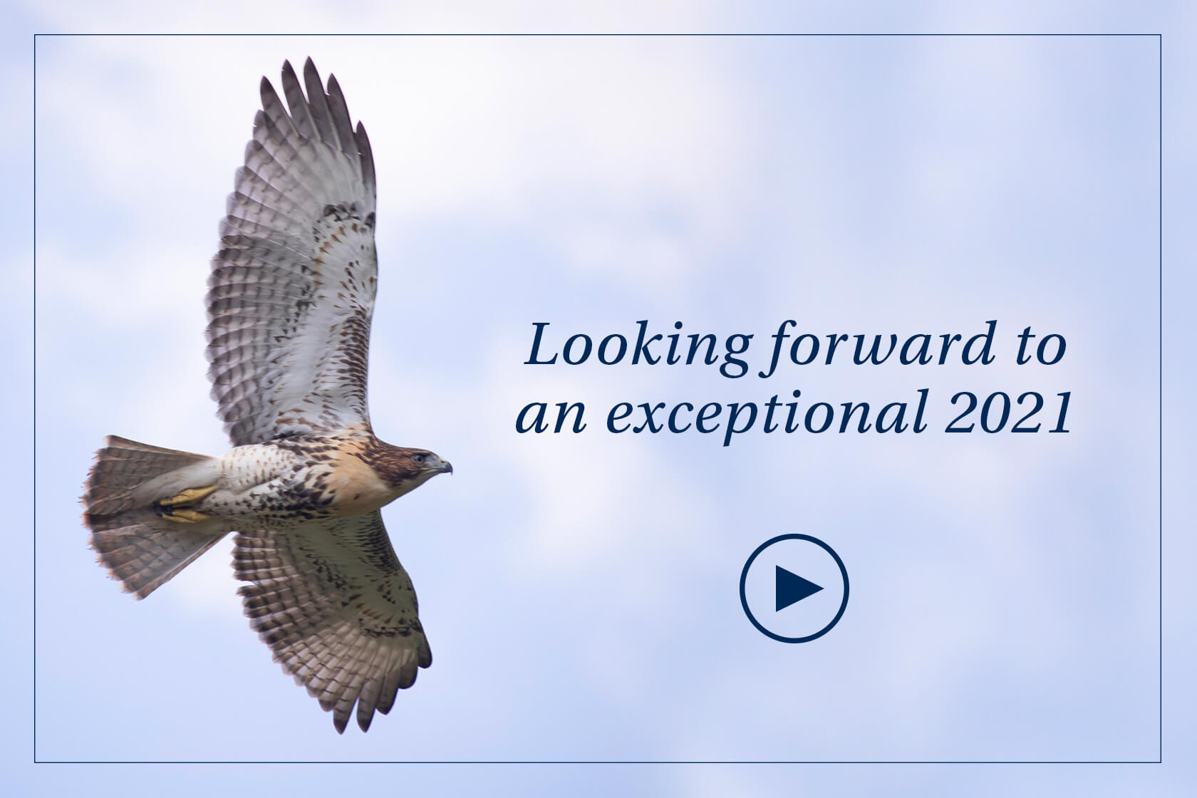 A hawk flying over a slightly cloudy sky, by text that reads 'Looking forward to an exceptional 2020.'