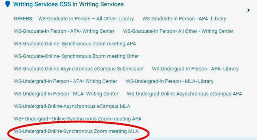 Photo image of Writing Services Appointment Screen - Select writing style for virtual session - click or tap for detailed view