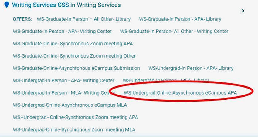 Photo image of Writing Services Appointment Screen - select the type of writing style for session - click or tap for detailed image view