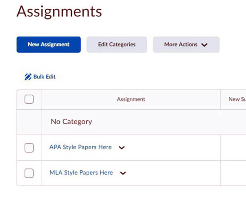 Photo image of Writing Services Appointment Screen - select Style APA or MLA Type for Assignment - click or tap for detailed view
